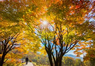 関東平野を一望できるハイキング