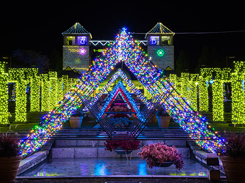 Gunma flower park illumination & Fireworks display