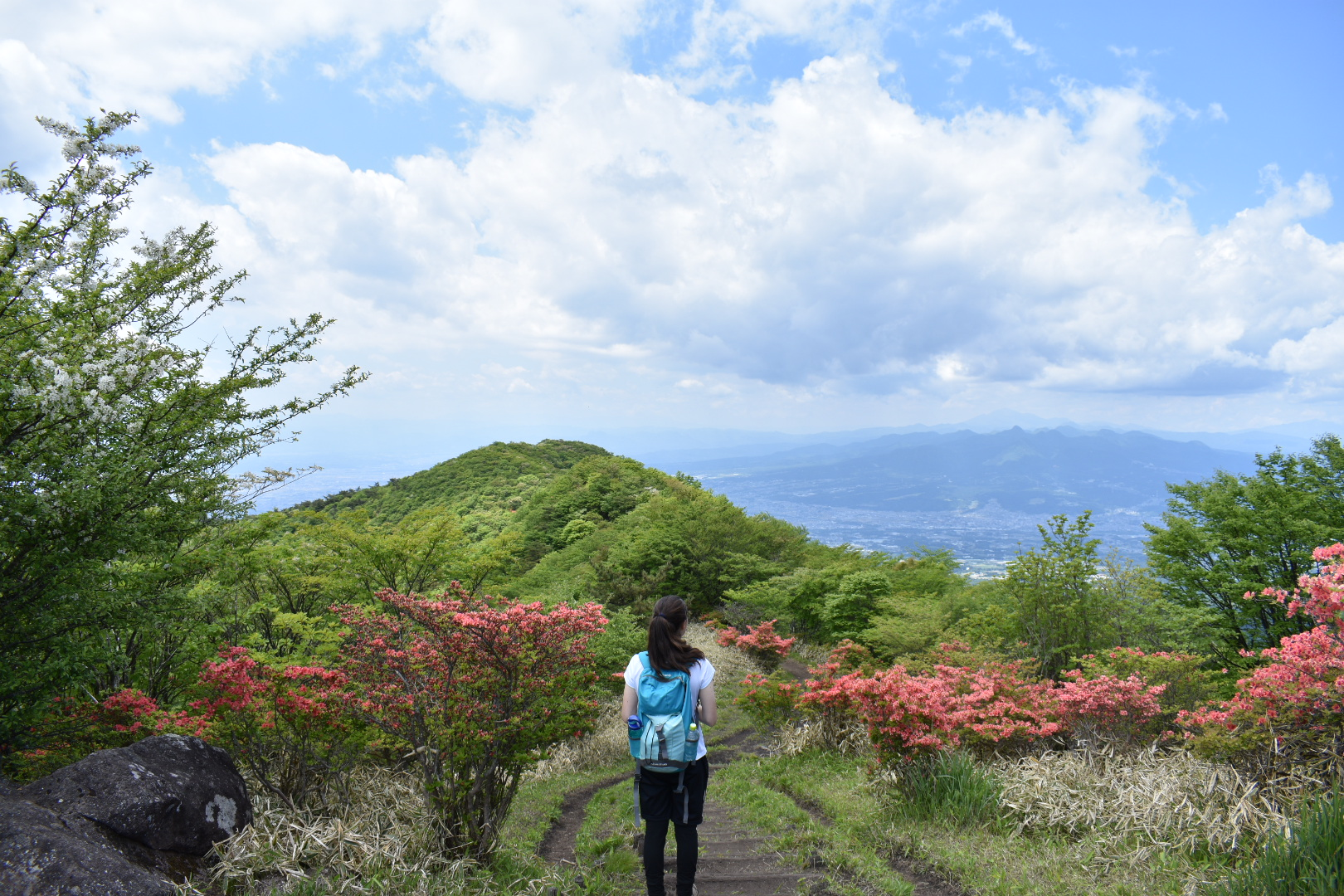 A hiker looks out at azaleas and a great view from Nabewari ridgeline