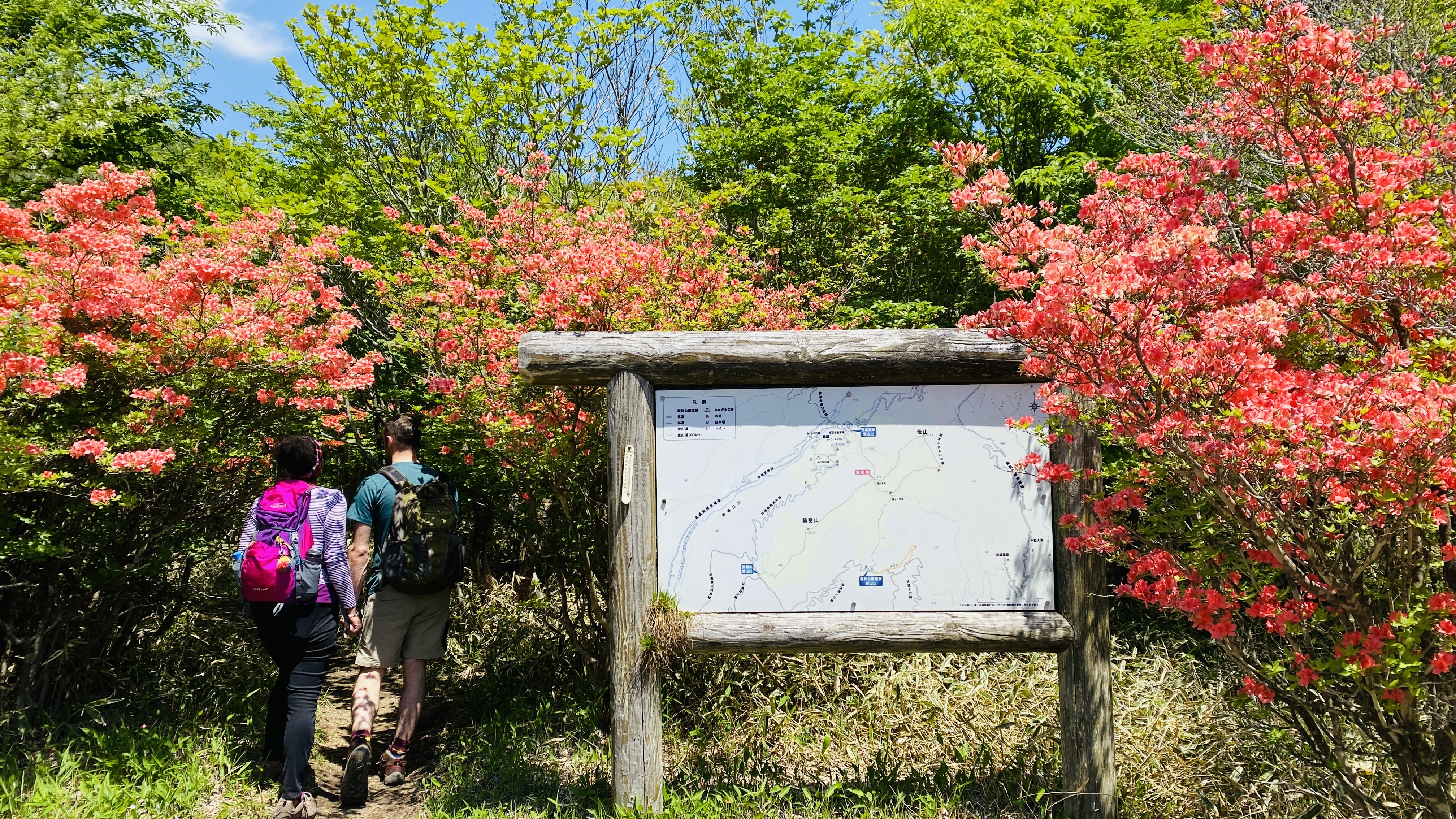 Hikers enter a trail next to a trail map signboard at Arayama Kogen