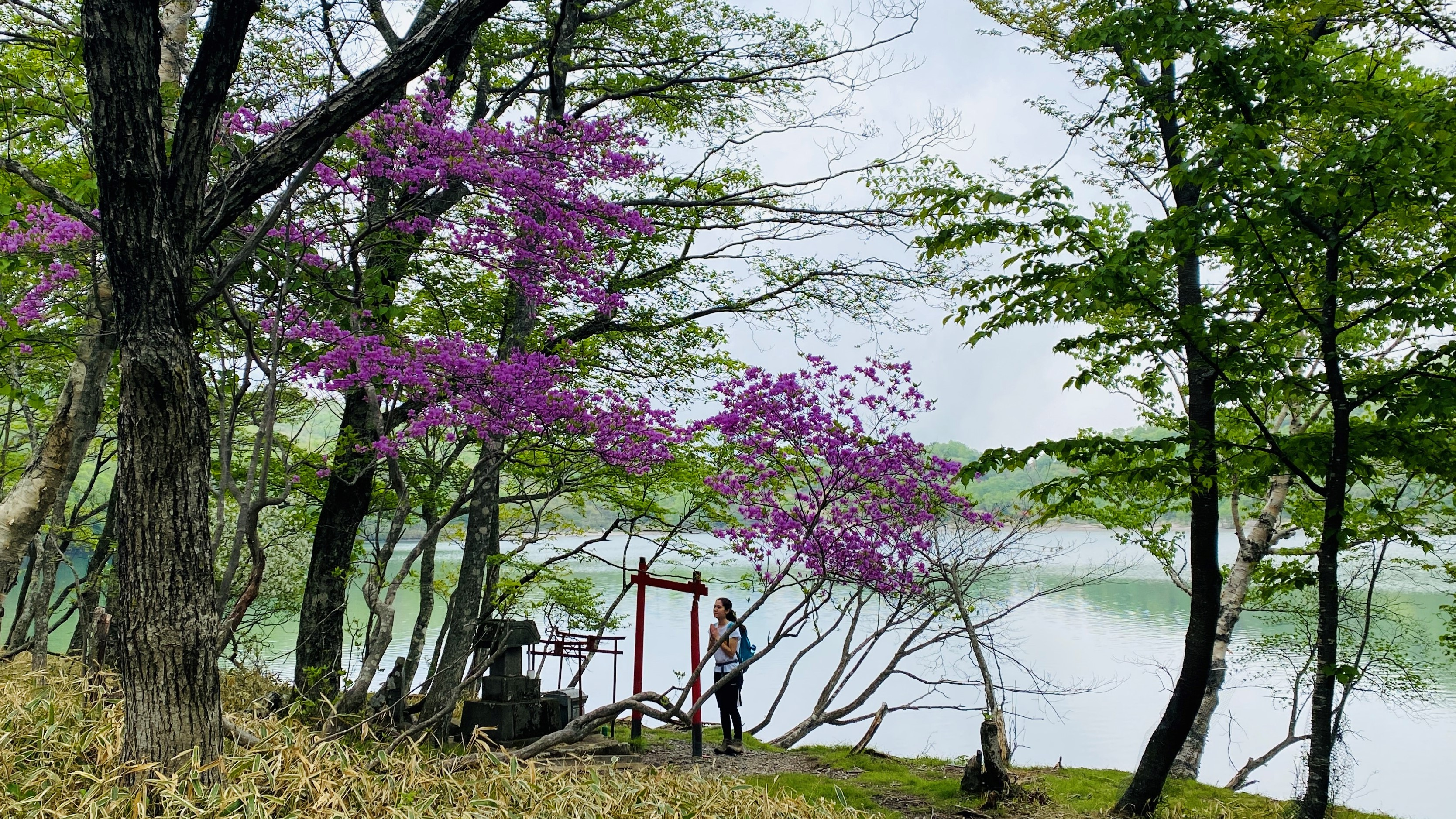 a hiker stops to pray at a small shinto shrine by a lake