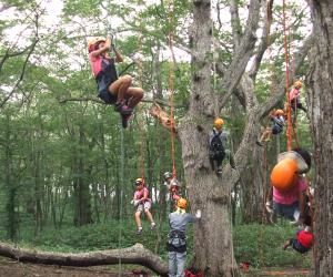 ツリーイング~木の上から森を眺めよう~