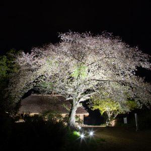 【ライトアップ情報】国指定重要文化財「阿久沢家住宅」