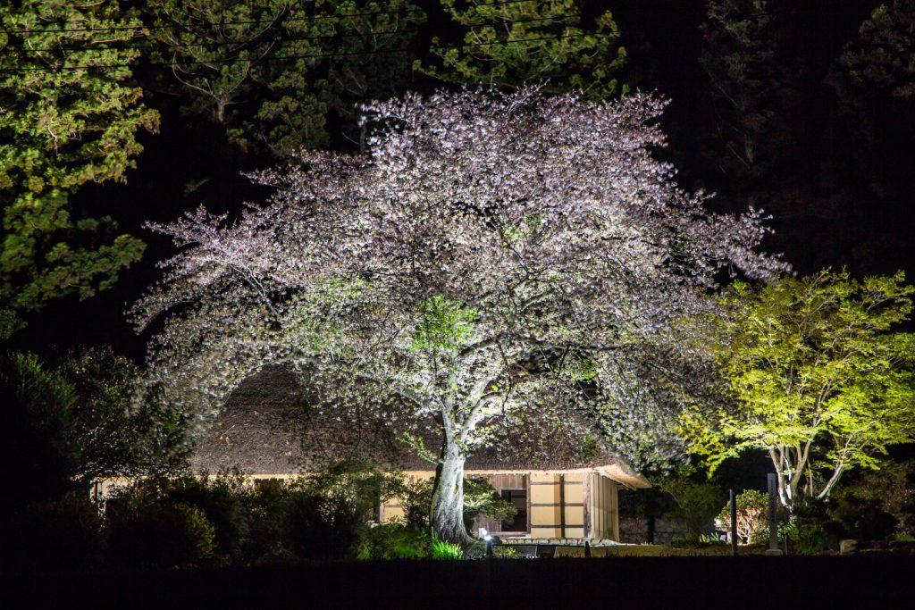 阿久沢家住宅ライトアップ