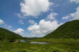 赤城山 覚満淵での自然観察会