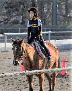 親子で楽しむ体験乗馬教室