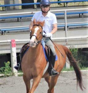 50歳からの体験乗馬4回コース