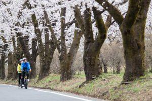 AKAGI e-Bike お花見シークレットツアー